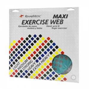 Exercise-Web-Maxi.jpg